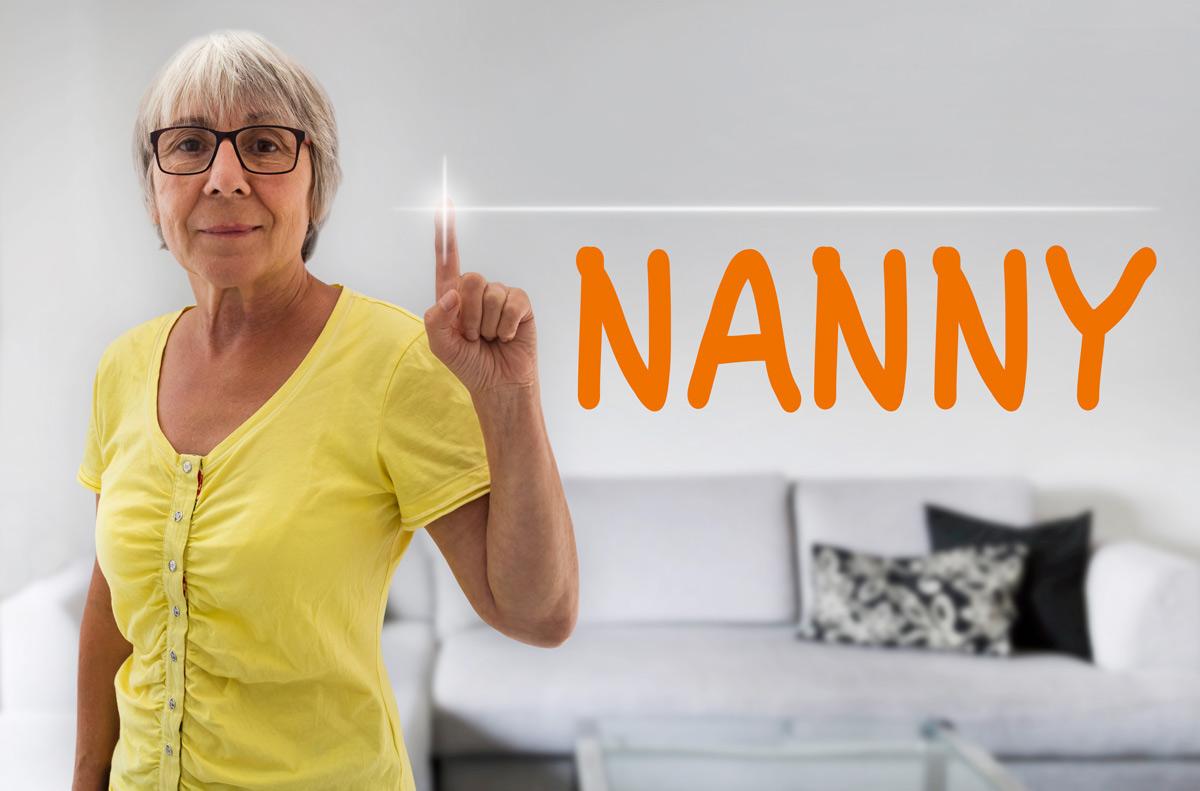 Nanny Tax Image